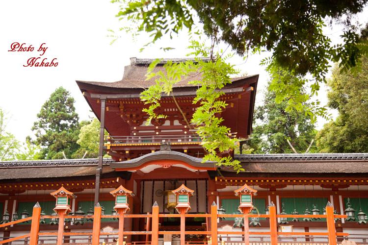Nara50.jpg