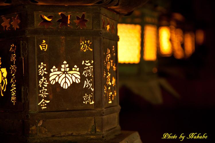 Nara51.jpg