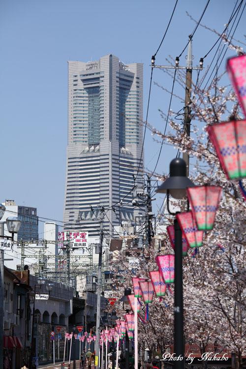 Oookagawa10.jpg