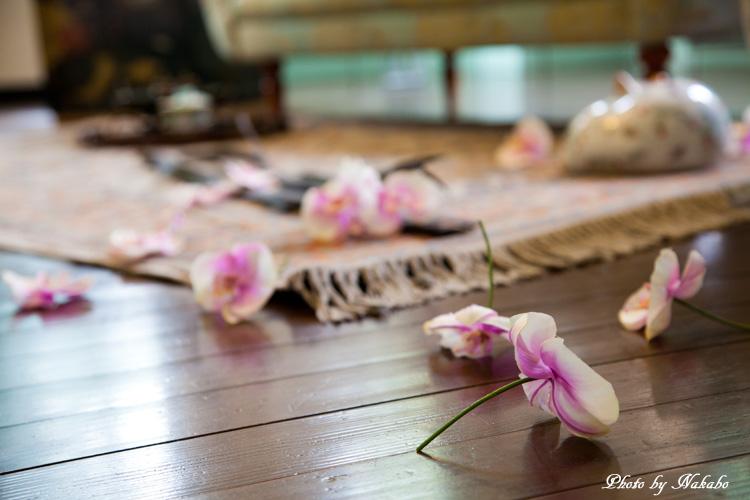 Yamate-Flower50.jpg