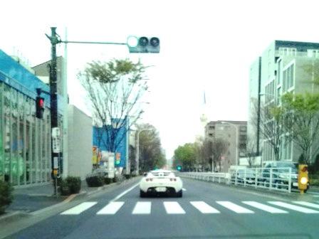 2010001.jpg