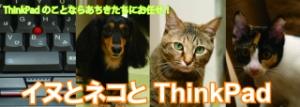 イヌとネコとThinkPad