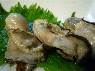 091130牡蠣
