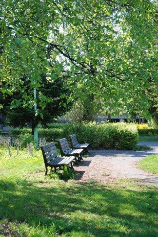park12-1.jpg