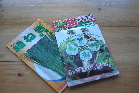 seed12-1.jpg