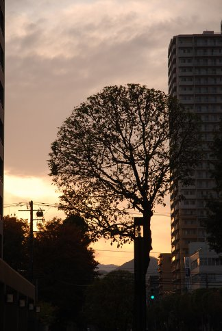 sunset10-6.jpg