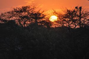 09.10.21夕陽