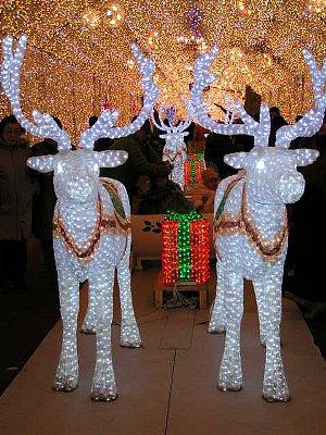 2009クリスマス02