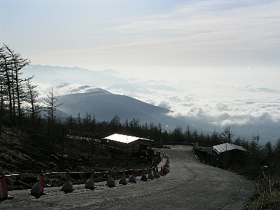 2010TOJFS002