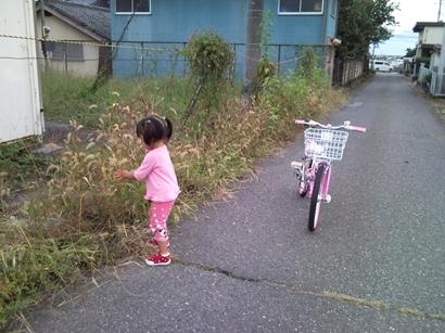 Photo246_R.jpg
