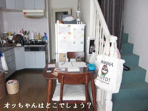 1_20120108225017.jpg