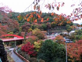 高津戸峡1
