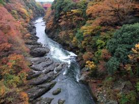 高津戸峡4