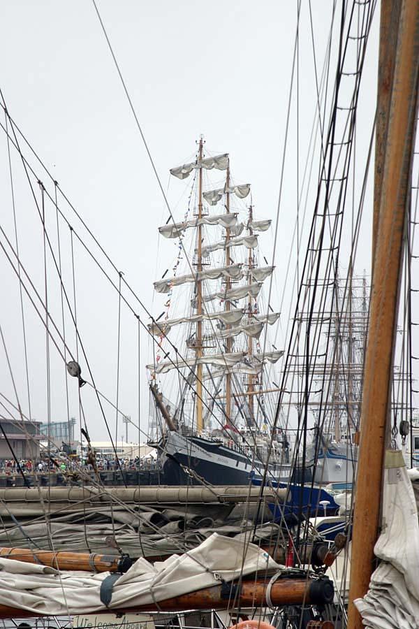 帆船フェスタ2