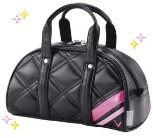 accessorybag -1