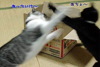 2011-12-24-2.jpg