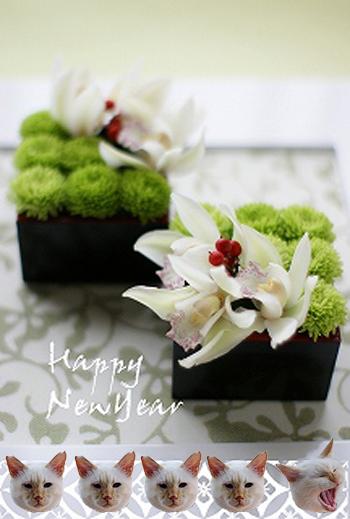 2012-01-01-1.jpg