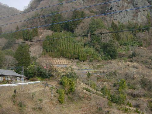 2010_0107BK.jpg