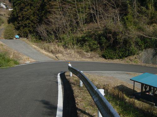 2010_0120BV.jpg