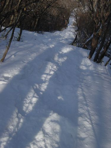 2010_0125AL.jpg