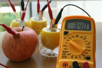果物電池の実験