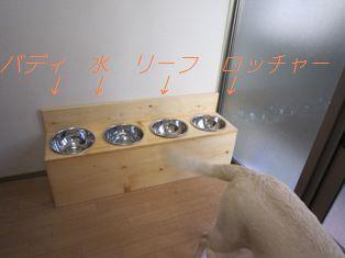 20100331004.jpg