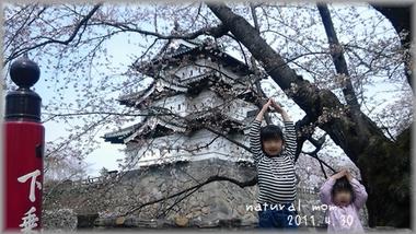 GW桜祭り