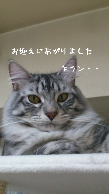 bQxnH.jpg