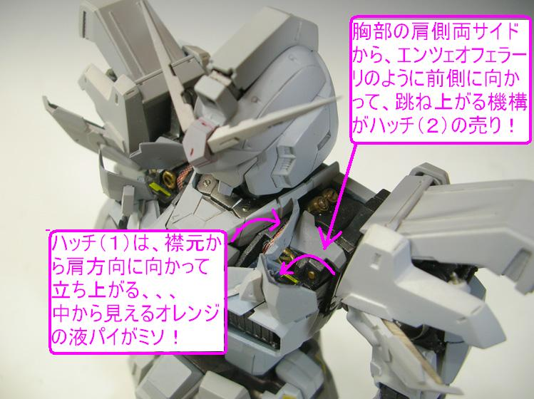 XCV-008-02.jpg