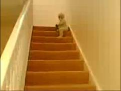 階段駆け下りるバブー