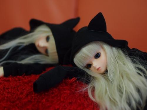 P2280932.jpg