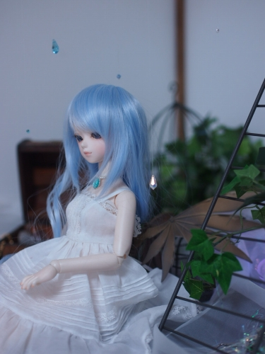 P5023369.jpg