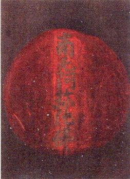 親4-29-2010_005