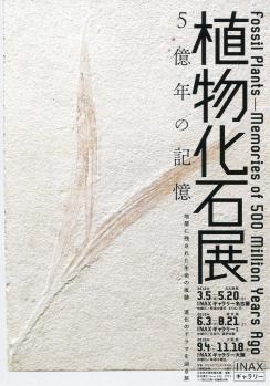 化石7-24-2010_006