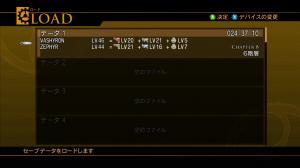 20100131085214-0017.jpg