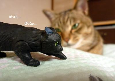 猫フィギュア4