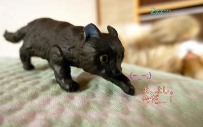 猫フィギュア6