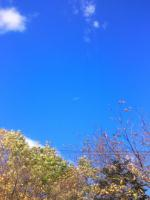 家の前の空
