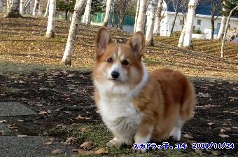 8yuki4.jpg