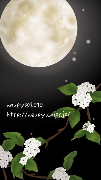 20100506_11.jpg