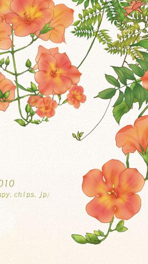 20100920_5.jpg