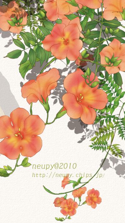 20100922_3.jpg