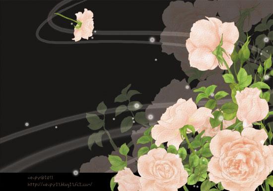 20110113_2.jpg