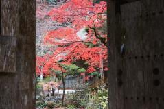yokokura2010_09.jpg