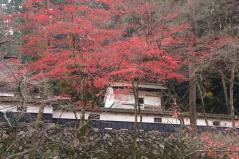 yokokura2010_10.jpg