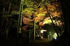 yokokura2011_10.jpg