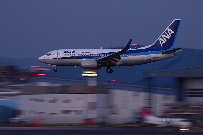 ANA B737-781 ANA980@伊丹スカイパーク(by 40D with EF100-400/4.5-5.6L IS)