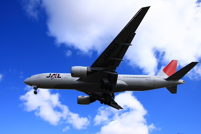 JAL B777-246 JAL113@豊中市樹木見本園(by 40D with SIGMA 18-50/2.8EX DC)