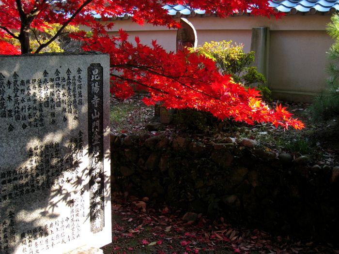昆陽寺の紅葉1(by IXY DIGITAL 910IS)