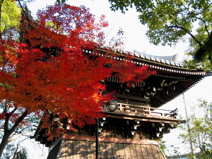 昆陽寺の紅葉3(by IXY DIGITAL 910IS)